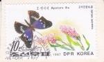 Sellos de Asia - Corea del norte -  Mariposa
