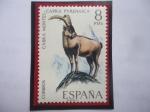 de Europa - España -  Ed:ES 2040 - Cabra Montes - Capra Pyrenaica - Serie: Fauna Hispana 1971