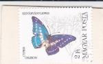 Stamps : Europe : Hungary :  Mariposa