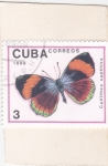 Stamps : America : Cuba :  Mariposa