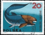 Stamps : Europe : Poland :  peces