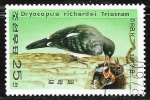 Stamps : Asia : North_Korea :  Dryocopus javensis richardsi