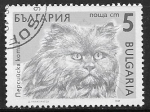 Stamps : Europe : Bulgaria :  Felis silvestris catus