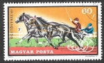 Stamps : Europe : Hungary :  2098 - Deportes Ecuestres