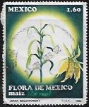 Stamps : America : Mexico :  Maíz.