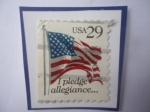 de America - Estados Unidos -  Bandera de USA - I Pledge allegiance -Prometo lealtad- Serie:1991-1994