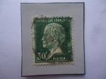 Stamps France -  Luis Pasteur (1822-1895)- Quiico-Fisico-Bacteriologico-Matemático, Alemán.