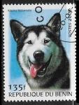Stamps : Africa : Benin :  Perros - Alaskan Malamute