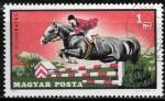 Stamps : Europe : Hungary :  Equitacion - Salto de caballo