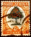 Stamps South Africa -  Naranjo (Citrus sinensis)