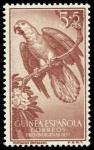 Sellos de Africa - Guinea Ecuatorial -  Guinea Española 365 ** Loros
