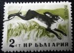 Sellos de Europa - Bulgaria -  Animales del bosque (Lepus europaeus)