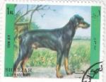Stamps  -  -  SHARJA- intercambio