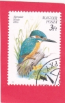 Stamps : Europe : Hungary :  ave