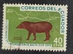 Stamps America - Ecuador -  Fauna silvestre