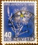 Stamps Switzerland -  Pro juventud. Large Pink (Dianthus superbus)