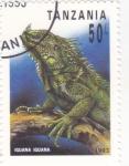 Stamps : Africa : Tanzania :  IGUANA