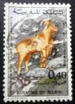 Stamps Morocco -  Naturaleza. Ammotragus lervia