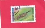 Stamps : Europe : Bulgaria :  Mosca serpiente (Raphidia notata)