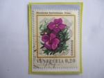 Stamps Venezuela -  Monochaetum humboldtianum .Triana - Serie: Flores de venezuela.