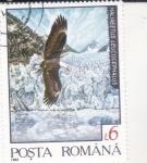 Stamps : Europe : Romania :  Àguila calba (Haliaeetus leucocephalus) ·