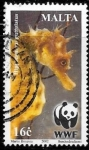 Stamps : Europe : Malta :  fauna