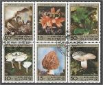 Stamps North Korea -  Minerales y Hongos