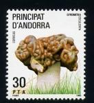 Stamps Europe - Andorra -  Gyromitra Esculenta