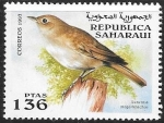 Stamps Morocco -  aves
