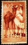 Stamps Spain -  IFNI. Pro infancia. Dromedario