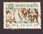 Stamps Iran -  Cultivos