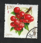 Stamps : Asia : China :  5544 - Cerezas