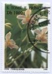 Sellos de Africa - Santo Tomé y Principe -  Plantas medicinales 1996, Odontoglossum chiriquense