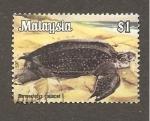 Stamps : Asia : Malaysia :  INTERCAMBIO
