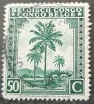 Stamps : Europe : Belgium :  CONGO BELGA 1942 Palmeras