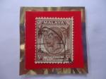 Stamps Asia - Malaysia -  King George V - Straits Settlements -Administración Británica-( establecimientos estrecho)