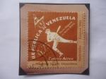 Stamps : America : Venezuela :  Primeros Juegos Deportivos Nacionales-Caracas 1961 - Hecer Deporte es hacer Patria.