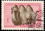Stamps Mongolia -  Animales: Dromedario-1958