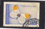 Sellos de Europa - Rumania -  Mariposa