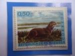 Stamps : America : Venezuela :  Nutria o Perro de Agua (Pteronura brasiliensis)