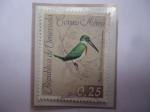 Stamps : America : Venezuela :  Martín Pescador (Chloroceryle amazona)