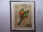 Stamps : America : Venezuela :  Tucuso Montañero (Trogon collaris)