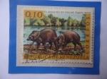 Stamps : America : Venezuela :  El Baquiro de Collar (Tagassu tajacu)