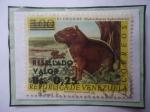 Stamps : America : Venezuela :  El Chaguire (Hydrochoerus bydrochoeris)-Sello Resellado con Bs 25 sobre bs 3,00