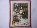 Stamps : America : Venezuela :  Conserve los Recursos Naturales Renovables- Venezuela los necesita