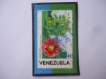 Stamps : America : Venezuela :  Rosa de Montaña - Brownea grandiceps -