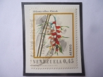 Stamps : America : Venezuela :  Heliconia Villosa - Klotzsch.