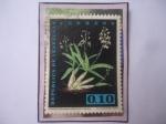 Stamps : America : Venezuela :  Orquídea- Caularthron bilamelltum (Rchb.f.) R.E.Schultes.