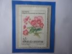 Sellos del Mundo : America : Argentina : Begonia (Begonia micranthera var. Hieronymi)- Serie:Flores.