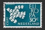 Sellos del Mundo : Europa : Holanda : 388 - Paloma (EUROPA CEPT)